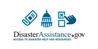 Disaster Assistance . gov logo